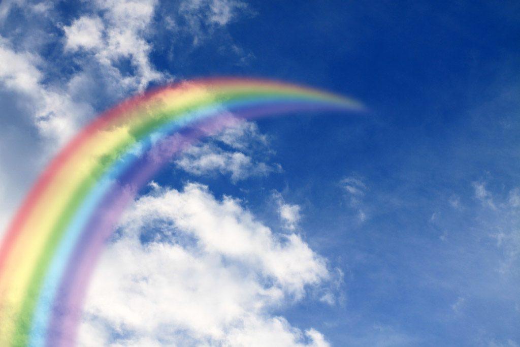 就活図鑑_LGBTの就活